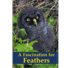 A Fascination for Feathers